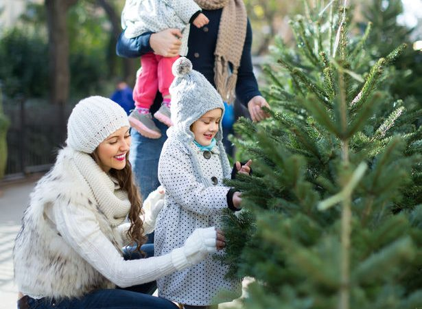 42371253 - happy family of four choosing christmas tree at market. shallow focus